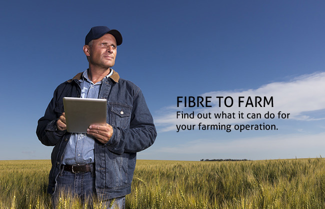 Fibre to farm